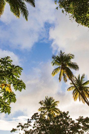 Программы гражданства за инвестиции на Карибских островах: обновления в 2021 году